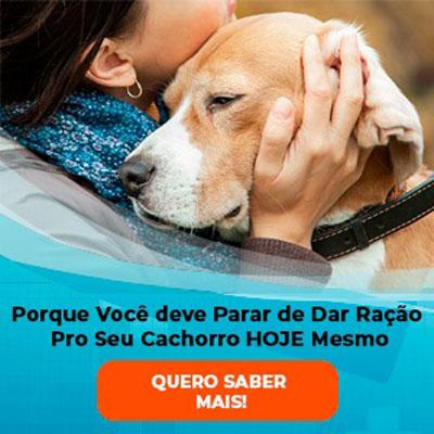 anuncio_cachorro5